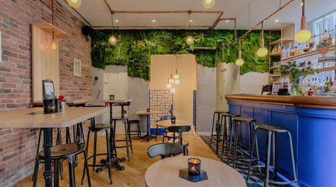 Rainettes, le premier bar à grenouilles de Paris