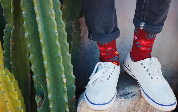 Jimmy Lion : des chaussettes à motifs colorées pour égayer sa tenue