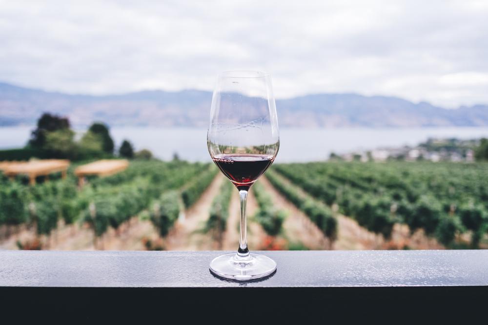 J'irai déguster chez vous : une dégustation de vin gratuite à domicile