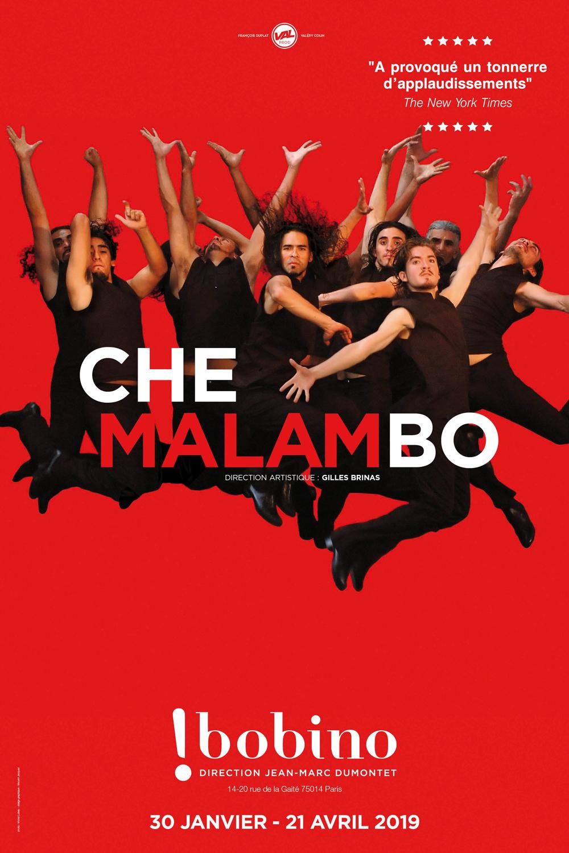 Le ballet argentin Che Malambo actuellement à Bobino